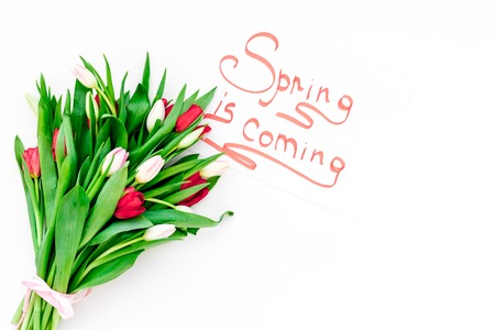 Spring is coming hand lettering surrounded by colorful tulips on white background top view.