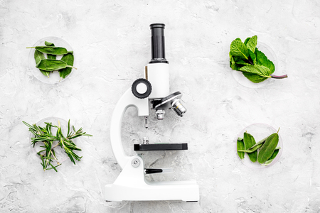 Analysing food concept. Healthy products. Herbs rosemary, mint near microscope on grey background top view
