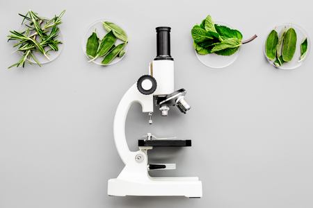 Safety food. Analysis. Greens near microscope on grey background top view copy space