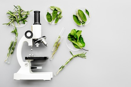 Safety food. Analysis. Greens near microscope on grey background top view.