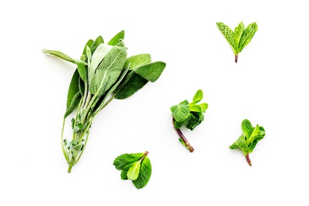 Alternative medicine. Phytotheraphy. Fresh herbs on white background top view.