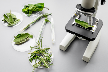 Safety food. Laboratory for food analysis. Herbs, greens under microscope on grey background top view. Archivio Fotografico