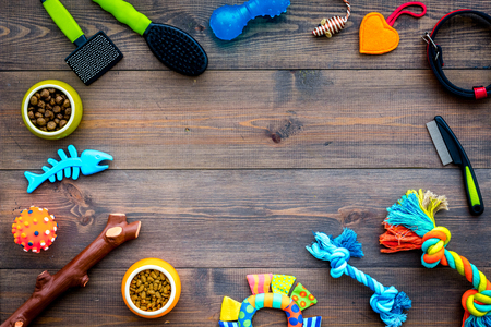 Pet accessories. Toys near bowls with animal feed, collar, grooming euqipment on dark wooden background top view copy space