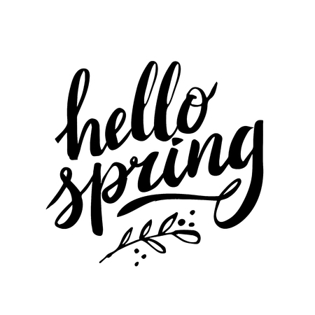 Hello Spring. Hand drawn calligraphy and brush pen lettering. design for holiday greeting and seasonal spring holiday card on white background