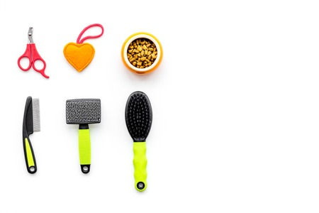 toys for pets, brushes and dry food on white background top view space for text