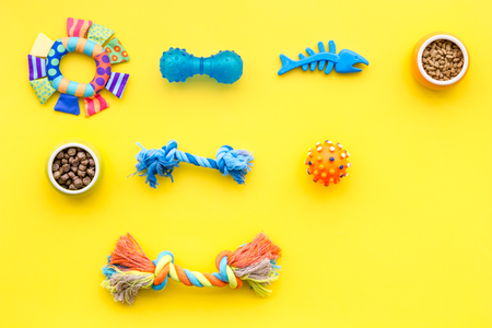 Acessories for the grooming of the dog. Food and toys for dogs. Yellow background top view mock-up