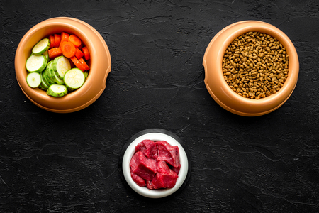 pet care with dry food, vegetables and raw meat for dog or cat in plastic bowl on black background top view space for text Reklamní fotografie