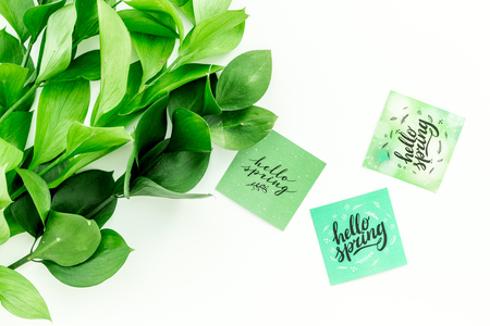 Spring background. Hand lettering hello spring near young green branch on white table top view Imagens