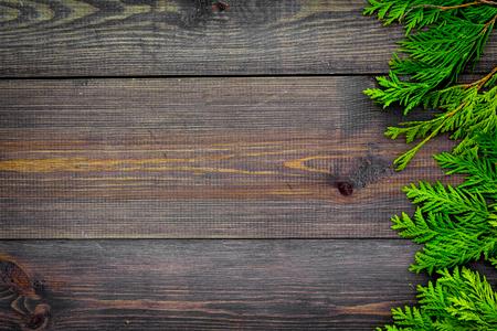 Juniper frame. Juniper branches on dark wooden background top view.