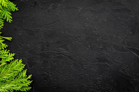 Cornice di ginepro per poster o design. Rami di ginepro su sfondo nero vista dall'alto.