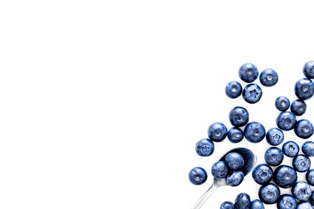 Blueberries on white background top view space for text.