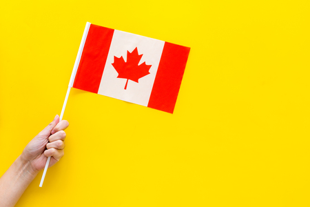 Canadian flag concept. Hand hold small flag on yellow background top view copy space