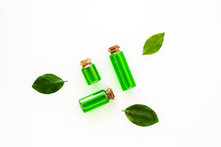 Tea tree essential oil near tea tree leaves on white background top view.