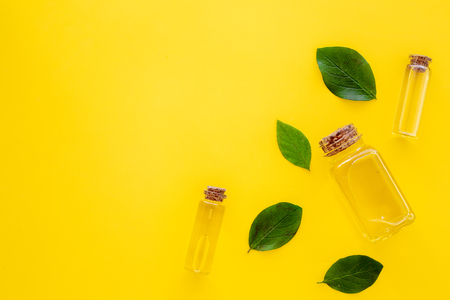 Tea tree essential oil near tea tree leaves on yellow background top view. 스톡 콘텐츠