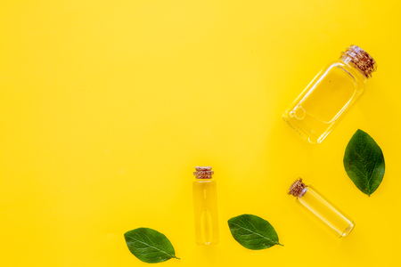 Tea tree essential oil near tea tree leaves on yellow background top view. Stock Photo