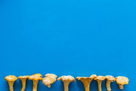 Chanterelle mushroom. Fresh raw chanterelles on blue background top view copy space pattern