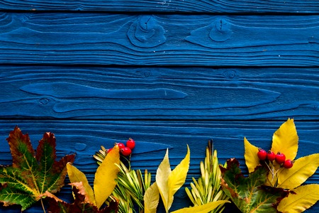 Autumn colors concept. Mockup with yellow leaves on blue wooden background top view. Archivio Fotografico