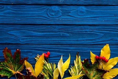 Koncepcja kolory jesieni. Makieta z żółtymi liśćmi na niebieskim tle drewnianych widok z góry. Zdjęcie Seryjne