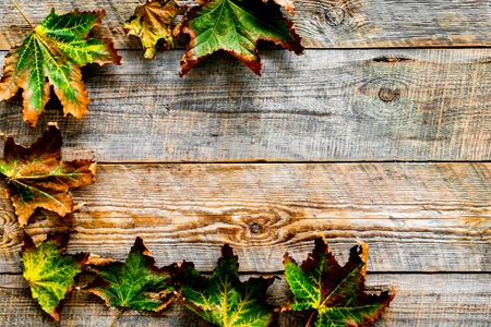 Autumn colors concept. Mockup with yellow leaves on wooden background top view. Stok Fotoğraf