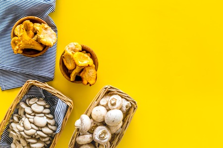 Collect mushroom concept. Champignons, oysters, chanterelles in basket on yellow background top view space for text
