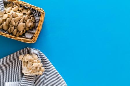 Oyster mushroom. Fresh raw veshenka in basket on blue background top view.