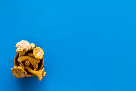 Chanterelle mushroom. Fresh raw chanterelles on blue background top view. Stock Photo
