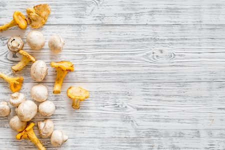 Chanterelle and champignon mushroom. Fresh raw chanterelles on white wooden background top view copy space Zdjęcie Seryjne