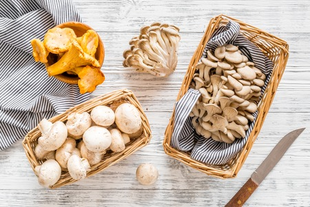 Collect mushroom concept. Champignons, oysters, chanterelles in basket near knife on grey background top view.