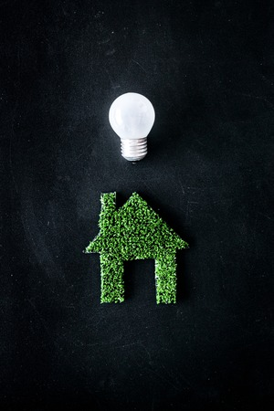 Enegry saving technology concept. House cutout made of green grass near light bulb on black background top view copy space