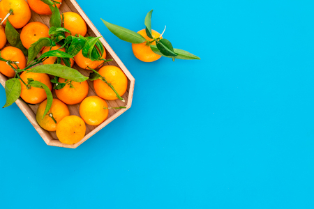 Winter fruits for New Year and Christmas. Tangerines on blue background top view mock-up Stock Photo