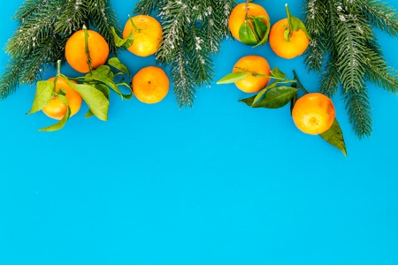 Winter fruits for New Year and Christmas. Tangerines, fir tree on blue background top view mock-up Stock Photo
