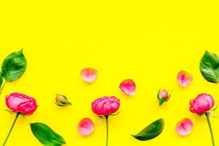 Rose flowers background. Rose roses on yellow background top view copy space border