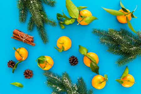Branch of mandarins, fir tree and cinnamon for New Year and Christmas celebration on blue background top view