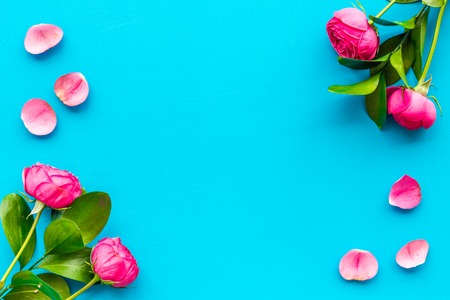Rose flowers background. Rose roses on blue background top view space for text border Stock Photo