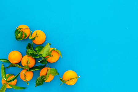 Branch of mandarins for New Year and Christmas celebration on blue table background top view mockup