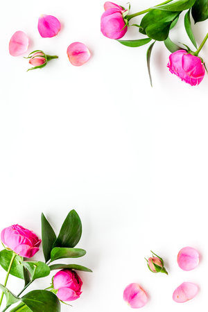 Rose flowers background. Rose roses on white background top view.