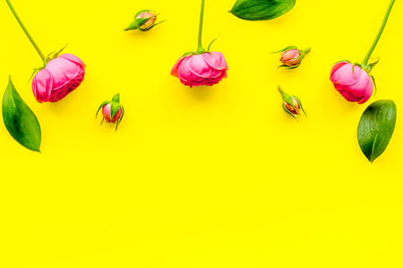 Rose flowers background. Rose roses on yellow background top view.