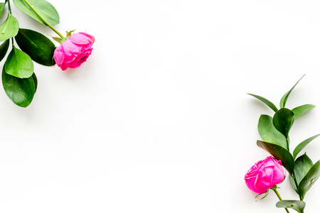 Rose flowers background. Rose roses on white background top view copy space