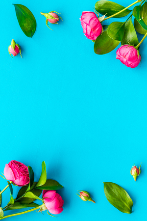 Rose flowers background. Rose roses on blue background top view copy space frame