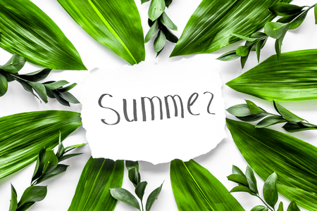 Summer concept. Hand lettering text summer near green leaves and branches on white background top view. Stock fotó