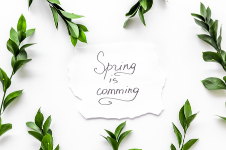 Spring concept. Hand lettering text spring is coming near green branches and leaves on white background top view