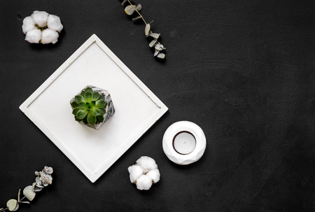 Home decoration. Modern design of work desk with plant, candle on black background top view copy space Zdjęcie Seryjne