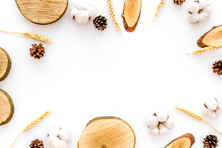 Tree stumps, immortelle and cones frame for presentation background top view copy space Stock Photo