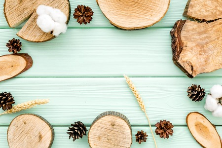 Wooden sawcut. Tree stumps, immortelle and cones frame for presentation background mint green top view copy space