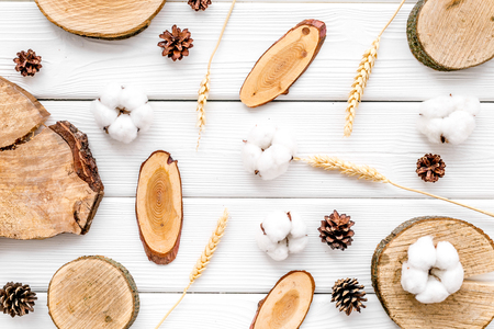 Wooden sawcut. Tree stumps, immortelle and cones for presentation background white top view pattern