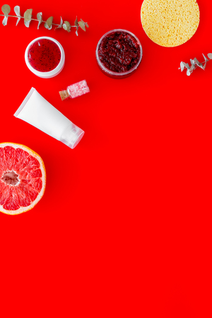 Cosmetics with natural herbal and citrus ingredients on red background top view copyspace Archivio Fotografico