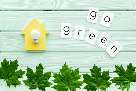 Go green concept with maple leaves, house and lamp on mint green wooden background top view Foto de archivo - 124211488
