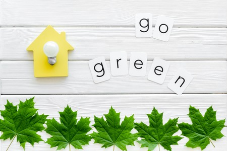 Go green concept with maple leaves, house and lamp on white wooden background top view Foto de archivo - 124211493