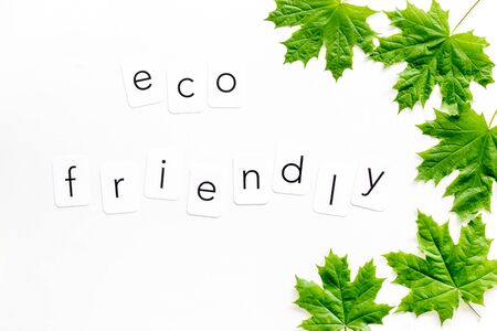 Eco friendly copy with green maple leaves for ecology concept on white background top view.