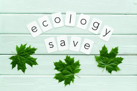 Ecology save copy with green maple leaves for eco concept on mint green wooden background top view.